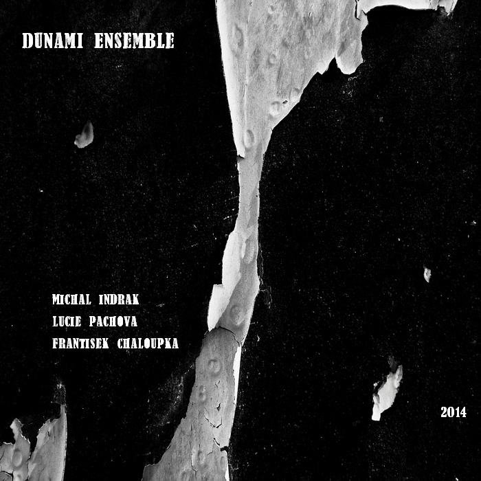 Dunami Ensemble plays Indrák, Páchová & Chaloupka (2014)
